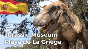 Playa de la Griega | North of Spain | Spain Travel Vlog [4K]